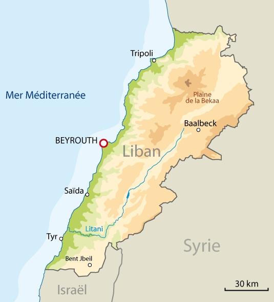Site de l'Association des Amis de Youakim Moubarac   Eléments